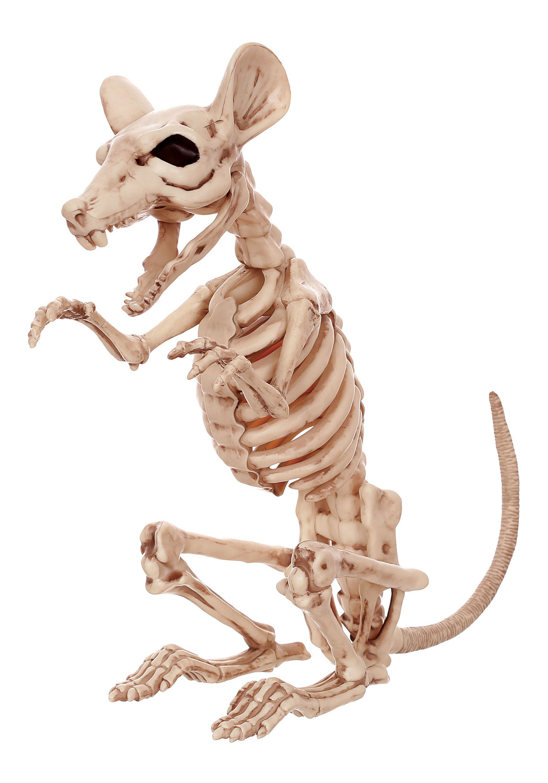 "11"" Skeleton Rat"