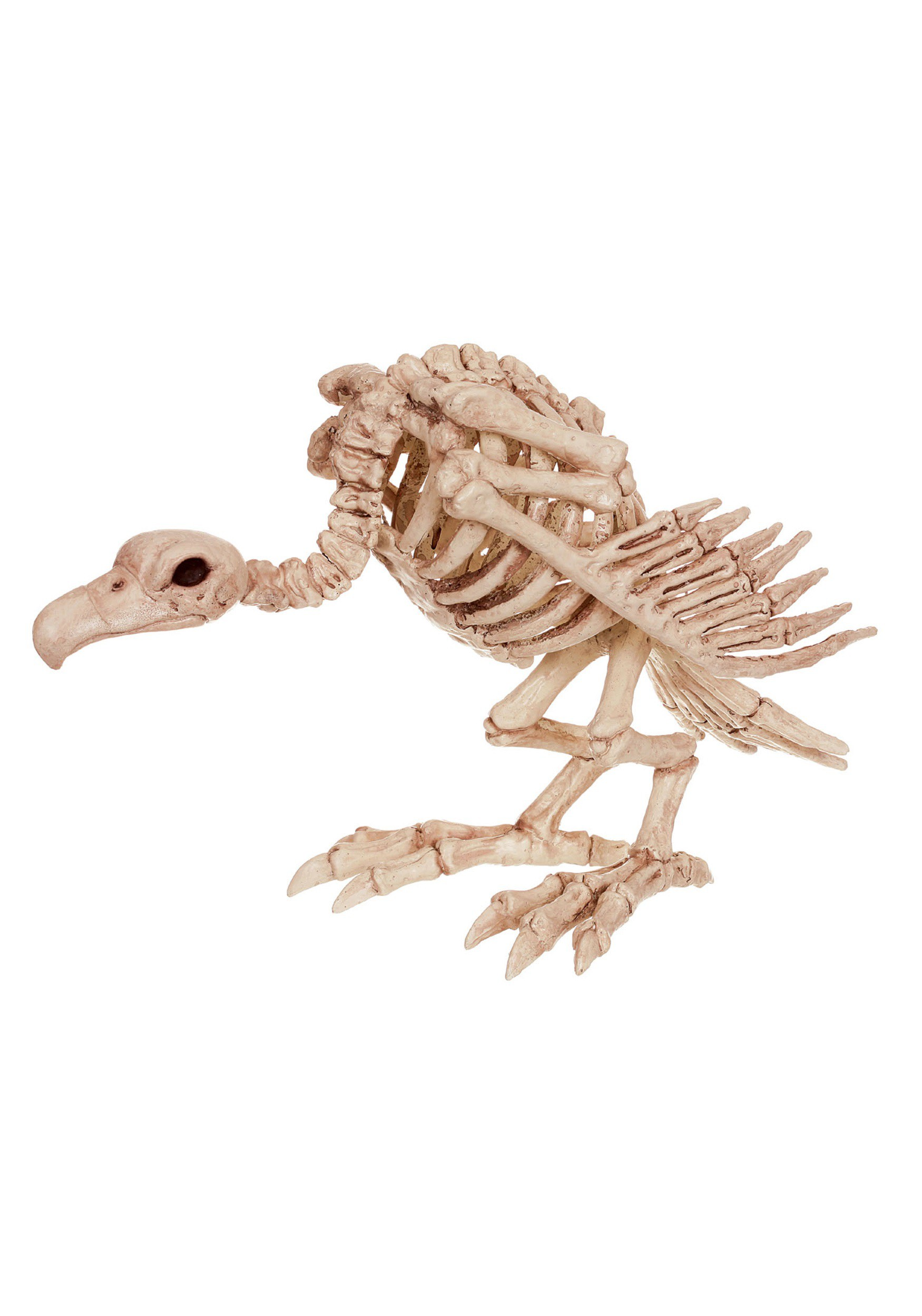 "14"" Skeleton Vulture"