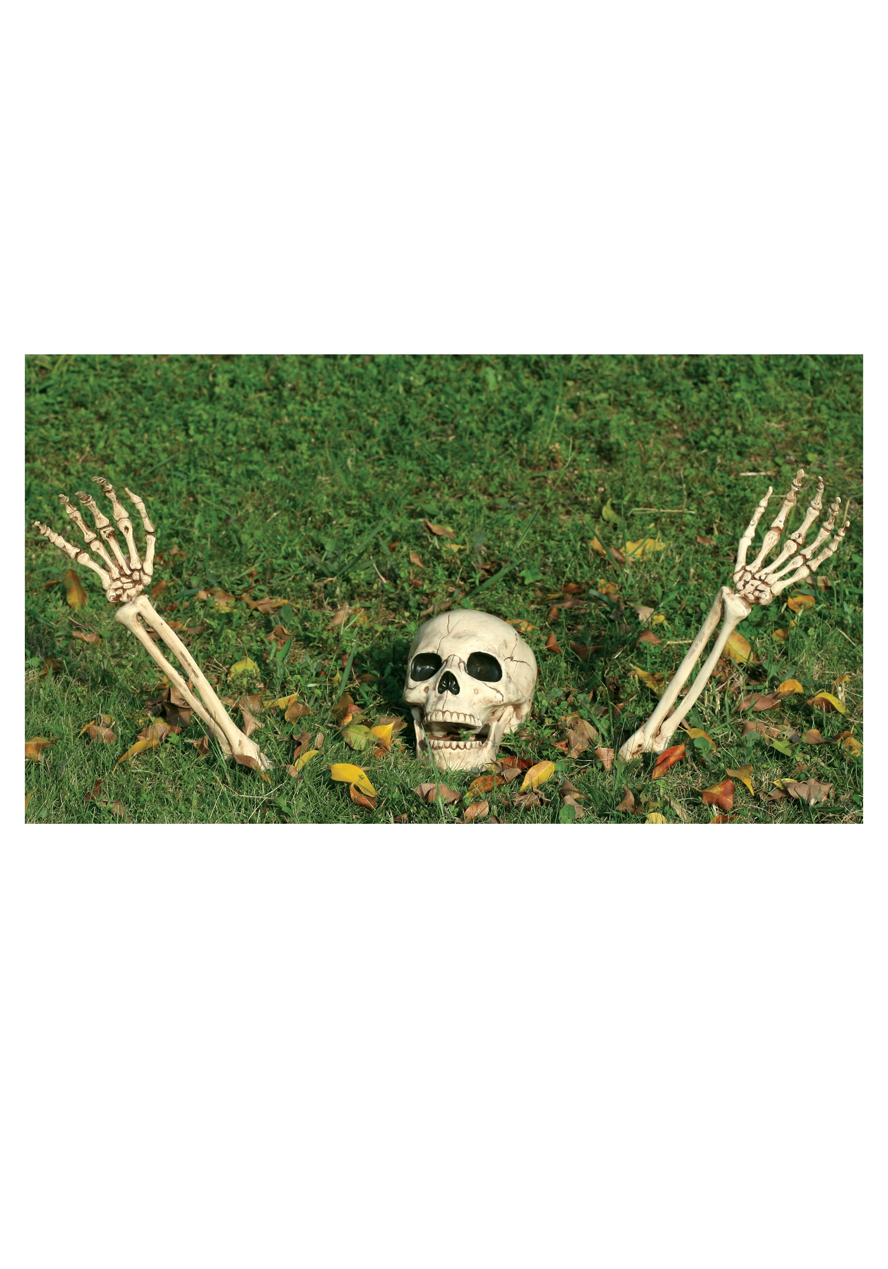 3 Piece Buried Alive Skeleton Kit