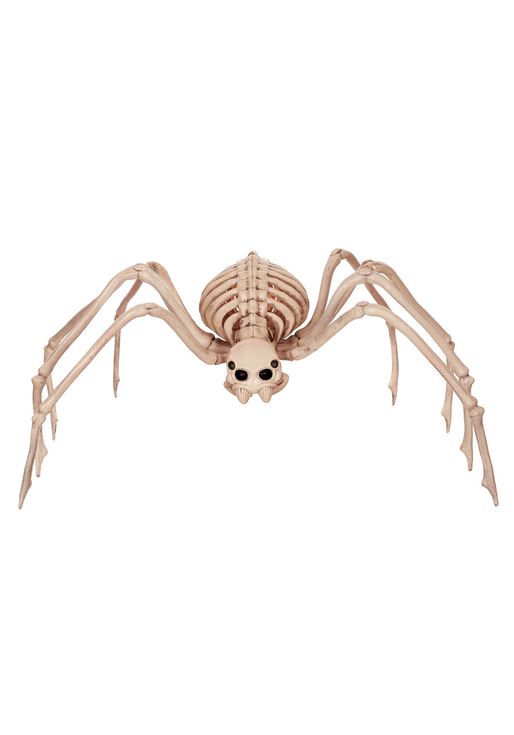 "34"" Skeleton Spider"