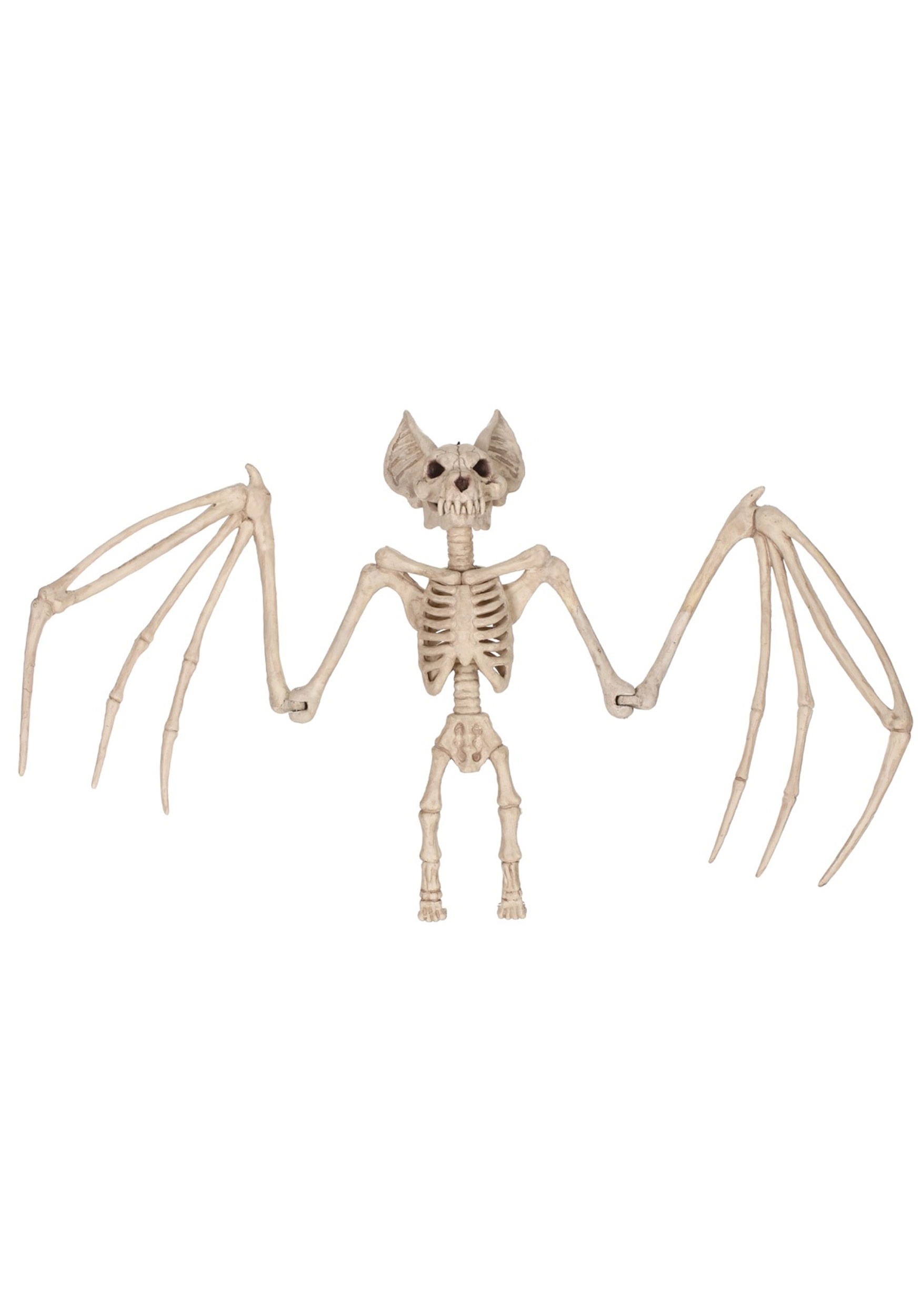 36'' Nocturnal Bat Skeleton