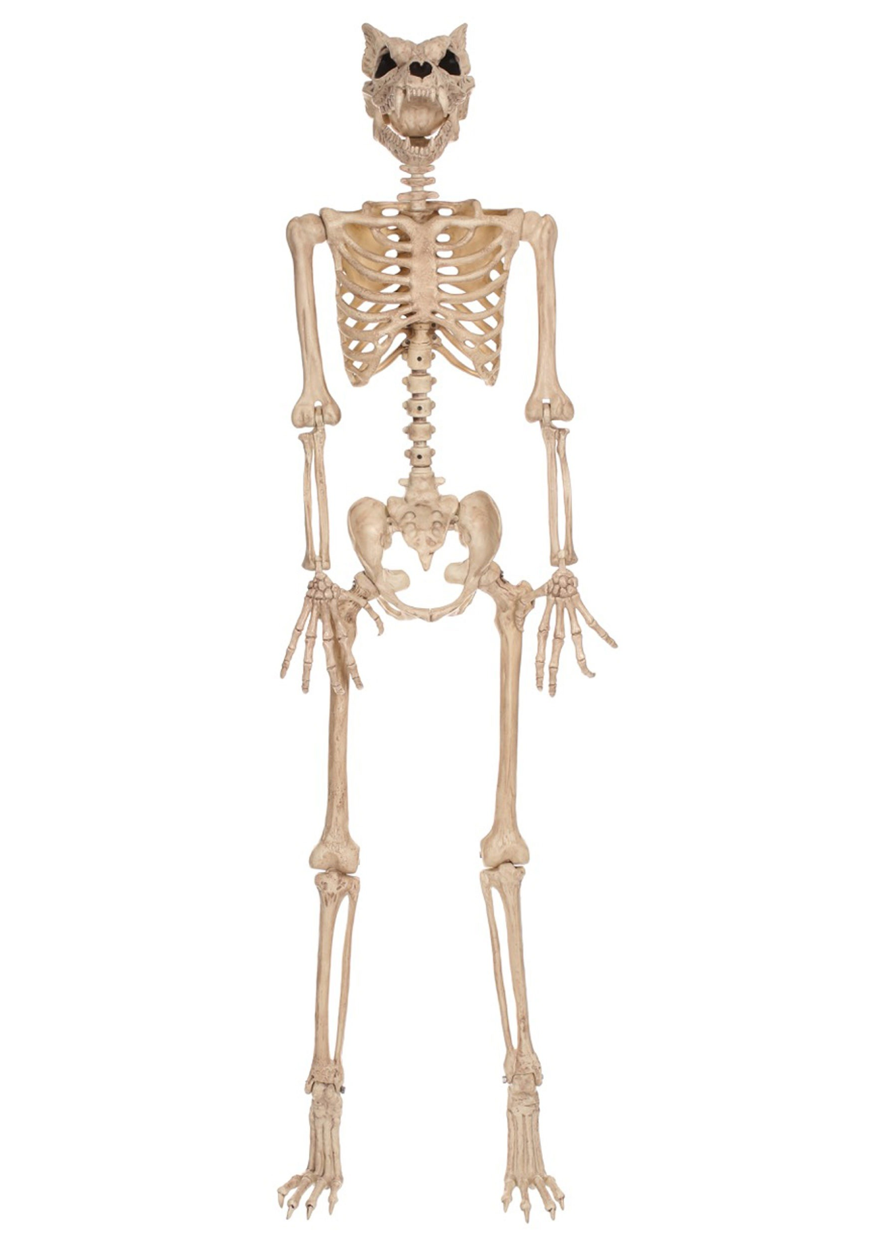64'' Pose-N-Stay Werewolf Skeleton