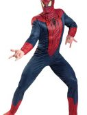 Adult Amazing Spiderman Costume