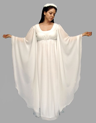 Adult Angel Costume