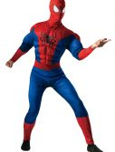 Adult Deluxe Spider-Man Costume