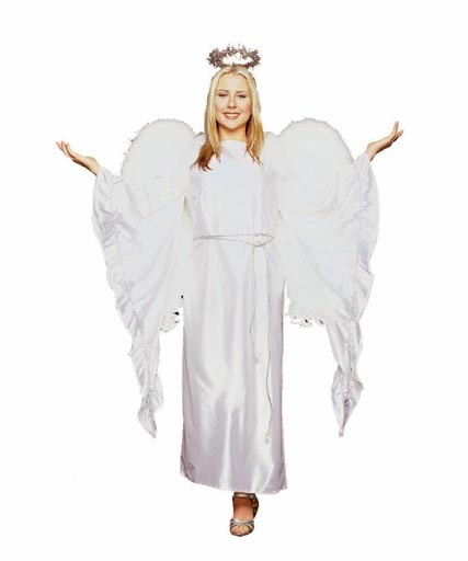 Adult Elegant Angel Costume