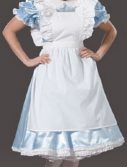 Adult Fancy Alice Costume