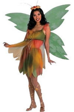 Adult Felicity the Woodland Fairy Costume