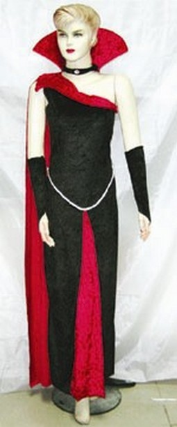 Adult Gothic Raven Blood Costume