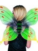 Adult Green Butterfly Wings