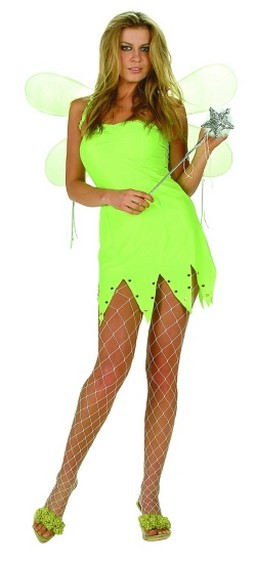 Adult Green Fairy Costume