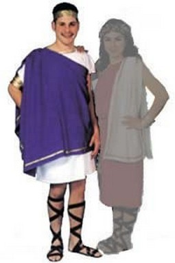 Adult Man's Toga Costume