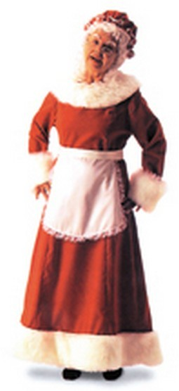 Adult Mrs. Santa  Costume Dress