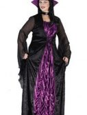 Adult Plus Size Countess Of Darkness Costume