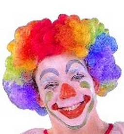 Adult Rainbow Clown Wig