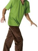 Adult Scooby Doo Shaggy Costume