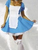 Adult Sexy Alice Costume