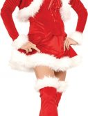 Adult Sexy Ms. Claus Costume