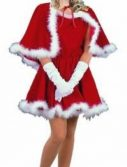 Adult Sexy Vintage Santa Girl Costume
