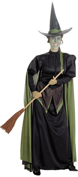 Adult Wicked Witch of the West Costume
