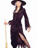 Adult Woman's Deluxe Witch Costume