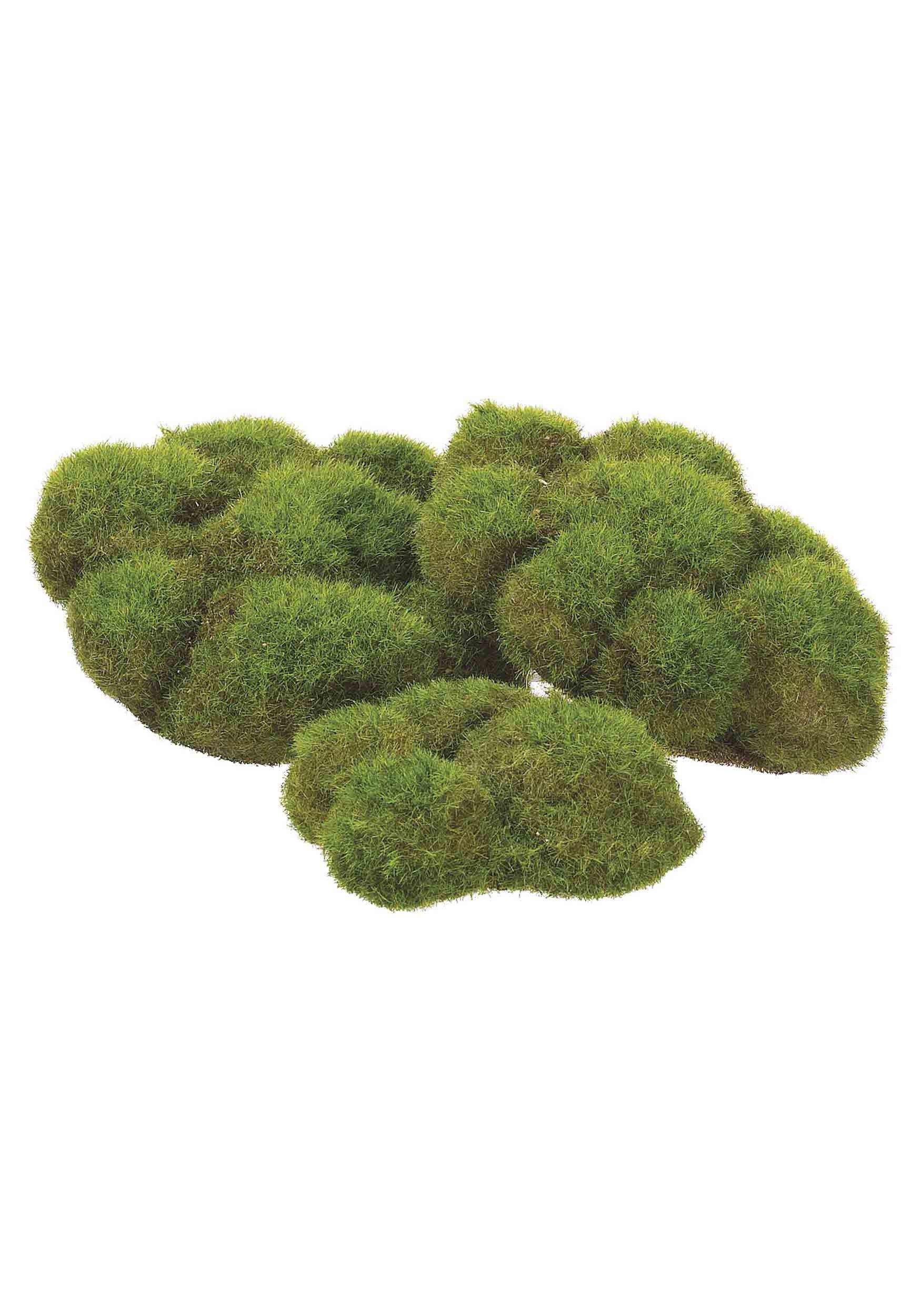 Bag of Mood Moss