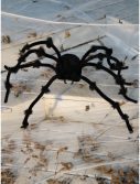 Black 50 inch Posable Spider