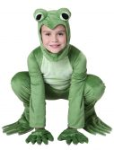 Child Deluxe Frog Costume