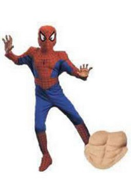 Child Deluxe Spiderman Costume