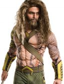 Dawn of Justice Adult Aquaman Wig and Beard Set