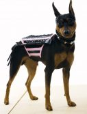 Doginatrix Dog Costume - Pink/Black