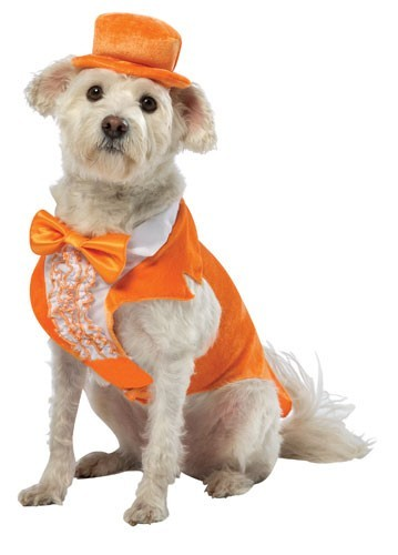 Dumb and Dumber Dog Costume - Lloyd Christmas