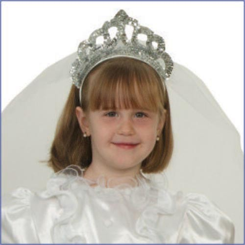 Silver Tiara with Viel