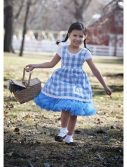 Toddler Kansas Girl Tutu Costume