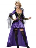 Wicked Queen Costume