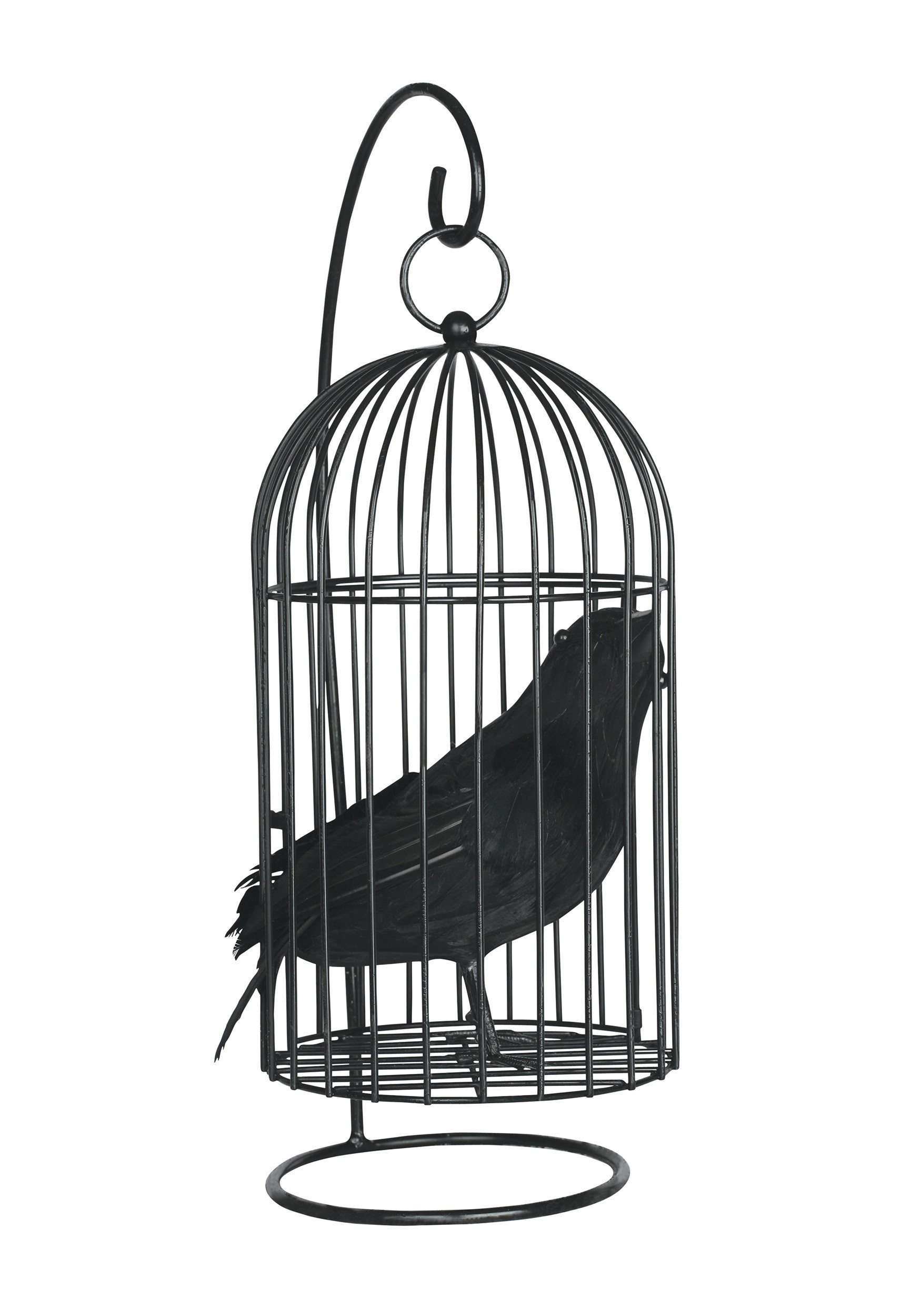 Wire Bird Cage with Bird